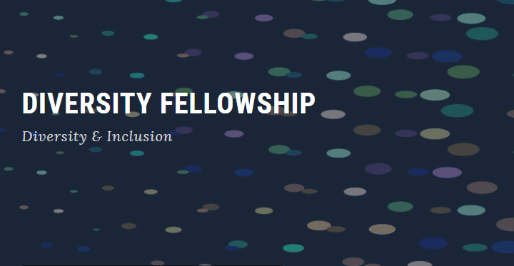 Harrity Diversity Fellowship